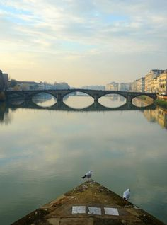 Florence bridge  Photo by raluca tudor — National Geographic Your Shot