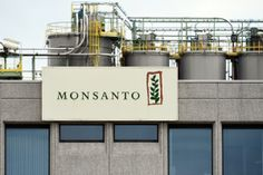 Monsanto looses battle - roundup will be labeled carcinogenic