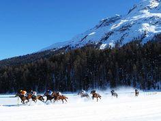 Frozen lake, St Moritz, Switzerland  Photograph:http://mykugelhopf.ch