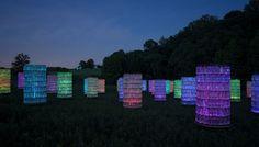 Light: Installations by Bruce Munro - Longwood Gardens