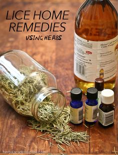 How to eliminate lice using herbal home remedies.