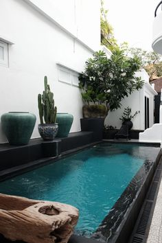 Stock Tank Swimming Pool Ideas, Get Swimming pool designs featuring new swimming pool ideas like glass wall swimming pools, infinity swimming pools, indoor pools and Mid Century Modern Pools. Find and save ideas about Swimming pool designs. Natural Swimming Ponds, Mini Pool, Modern Pools, Small Pools, Swimming Pool Designs, Tuscan Style, Garden Pool, Pool Houses, My New Room
