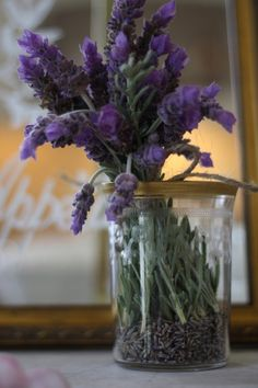 Fresh cut lavender simply presented in a glass jar with dried lavender flowers in the bottom. Photographed with a simple mirror background Dried Lavender Flowers, Lavender Green, French Lavender, Purple Flowers, Lavander, Lavender Cottage, Lavender Fields, Lavenders Blue Dilly Dilly, Vase Transparent