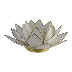 7 x Chakra rainbow lotus flower tealight candle holders capuz shell tea light set gift