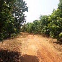 Farm land in Gummidipoondi Near by City in Agricultural Land on Ads-khan Real Estate Classifieds