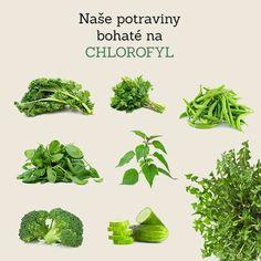 Naše potraviny s vysokým obsahom chlorofylu. Chlorofyl má pre telo úžasné účinky. Zlepšuje trávenie, pomáha pri detoxikácii, pri vylučovaní ťažkých kovov z tela a zbavuje zápachu z úst. Skúste si pridať do šťavy či smoothie, do týždňa pocítite účinky a veľa veľa energie. #detox #ocista #detoxikacia #chlorofyl #zelenastrava #listy #zelenina #jar #smoothies #stavy #odstavovanie #pupava #zihlava #salat #rukola #byliny #bylinky #energia #cerstvost #nitra #slovensko #zdravie #petrzlenova #vnat…