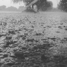 Los agarró el agua en la milpa. #lluvia #aguas #gotas #riachuelo #guanajuato…