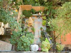 Een luchtfoto van een kleine tuin ontworpen door Tobin Parnes. Hij bewijst dat iedere tuin een plaatje kan worden.
