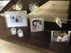 Fotos e mini gaiolas