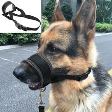 Soft Padded Pet Head Collar Champion Dog Training Halter Nylon Dog Muzzle Loop Stops Dog Pulling Training Tool Type: DogsDog Harness Type: Basic Halter Ha. Nylons, Dog Training Tools, Training Your Dog, Boxer Dogs, Pet Dogs, Dane Puppies, Dog Muzzle, Champion, Great Dane Puppy