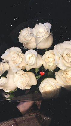 Rose Flower Pictures, My Flower, Creative Instagram Stories, Instagram Story Ideas, Flower Phone Wallpaper, Iphone Wallpaper, Rosen Box, Mode Poster, Flowers Instagram
