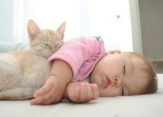 Kittens are cute, funny, and sometimes grumpy . just like a baby! They both like toys and can be picky about their food. Is it possible your baby is actually a cat? Find out and read through these hilarious 9 signs. Animal Activist, Painting Of Girl, Baby Portraits, Cat Sleeping, Cute Relationships, Baby Prints, Baby Month By Month, Cat Life, Cat Day