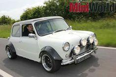 Mini on the run