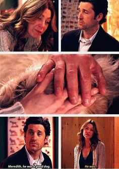 Derek: Meredith, he was a good dog. Meredith: He was. Merder Love, Grey's Anatomy quotes