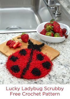 Lucky Ladybug Scrubby Free Knitting Pattern in Red Heart Scrubby yarn -- You'll enjoy having this ladybug Scrubby because it makes washing and cleaning go more quickly and feel like fun. Knit it for kid's bath time, to wash dishes or any cleaning task. It can be washed by machine and will air dry quickly.
