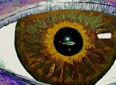 Teach Your Children Well - eye detail.