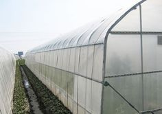 UV Plastic Film Greenhouse Greenhouse Film, Plastic Film, Energy Efficiency, Energy Conservation