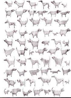 Multi Dog, Pen and Ink | Sally Muir