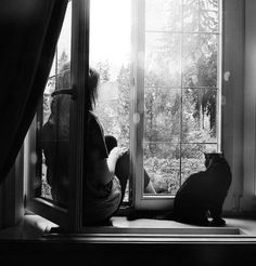 Image shared by Not Only Photos. Find images and videos about girl, cat and home on We Heart It - the app to get lost in what you love. Story Inspiration, Writing Inspiration, Character Inspiration, Lifestyle Fotografie, Window View, Window Seats, Cat Window, Open Window, Through The Window