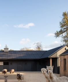 Stables, Buckinghamshire Exterior - McLean Quinlan Architects