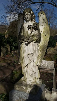 highgate cemetery angel gravestone in sun