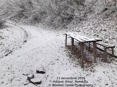 Hotărel, Bihor, România decembrie 2016 (2)