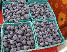 Blueberry, Blueberries Blueberry Cooking Hints, Tips, and Information