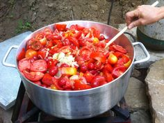 On the Homestead: No offence to Heinz, but there's nothing like homemade ketchup. Simmer fresh-picked tomatoes with onions, cayenne pepper and a bit of this and that, and you'll get homemade condiments. #ketchup #preserves