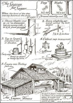 "violetcabin: ""Eric Sloane - Sugar house - the making of maple syrup. From ""The Seasons of America Past"" by Eric Sloane, "" Survival Life, Homestead Survival, Camping Survival, Outdoor Survival, Survival Prepping, Survival Skills, Camping Diy, Camping Packing, Camping Style"