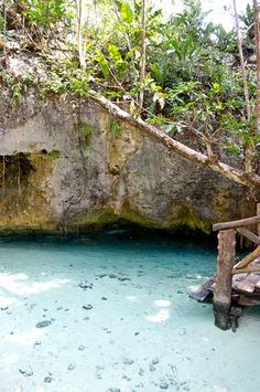 Gran Cenote #Tulum #RivieraMaya #Mexico