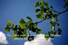 Mein Papa sagt... Im Leben sollte man nicht auf die Minuten, sondern auf die Momente achten. Kai Romas #zitate #deutsch #quotes     Weisheiten & Zitate TÄGLICH NEU auf www.MeinPapasagt.de