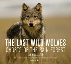 The Last Wild Wolves: Ghosts of the Rain Forest by Ian McAllister http://smile.amazon.com/dp/0520254732/ref=cm_sw_r_pi_dp_9T1Stb1TCMGC1BGB