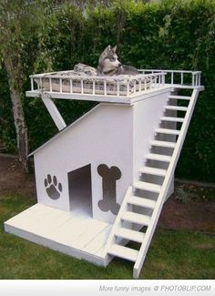 Now That's An Awesome Dog House