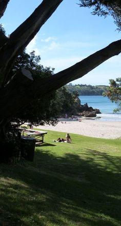 Auckland: Little Oneroa beach, Waiheke Island, New Zealand