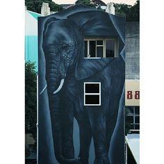 Elephant by OD (Owen Dippie) from New Zealand
