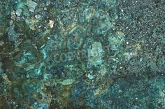 The mix of blues and greens in this Copper Mine Mineral Texture create a beautiful jewel tone, transforming your walls from blasé to opulent!