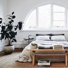 #sunday is for #relaxing . #bed #bedroom #room #design #decor #relax #miami #decorate #coconutgrove #sourceunknown #interiordesign #photography #furniture #cottage #realestate #vacation #paradise #nature #model #loft #architecture #travel #garden #coralgables #beauty #art #rustic by sebmattress