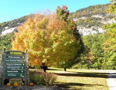 Chimney Rock State Park is great #fall #family #fun!