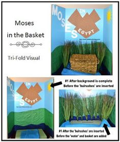 Moses in the Basket Visual and Tri-Fold