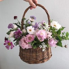 Small Flower Arrangements, Small Flowers, Preserved Flowers, Daily Drawing, How To Preserve Flowers, Flower Basket, Happy Saturday, Breeze, Bloom