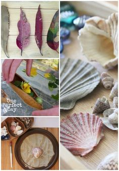 Exploring Reggio - a new series exploring the Reggio Emilia approach to learning. A great resource for including Reggio at home and in the classroom.