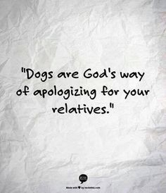 Dogs are God's way of apologizing for your relatives.