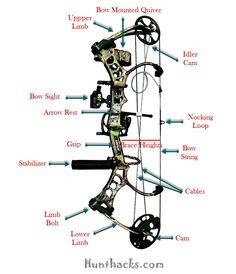 Compare compound bow vs crossbow | Compound Bow | Pinterest ...