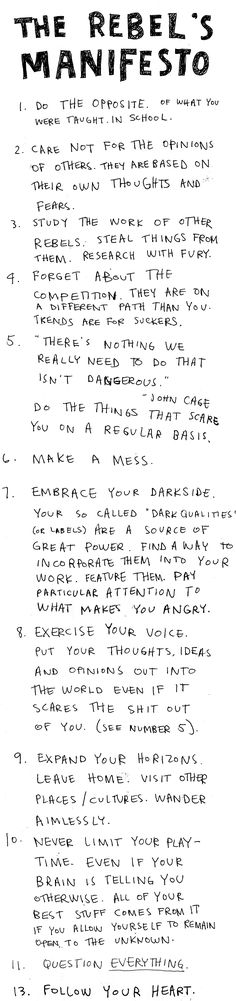 Rebel's Manifesto. I just realized I have been doing most of this all my life, and constantly being told not to do so.