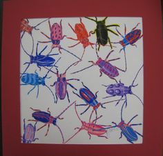 Christopher Marley inspired bug art...colored pencil.