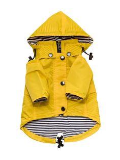 Ellie Dog Wear Yellow Zip Up Dog Raincoat with Reflective Buttons, Pockets, Rain/Water Resistant, Adjustable Drawstring, Removable Hood - Size XXS to XXL - Stylish Premium Dog Raincoats Dog Raincoat, Yellow Raincoat, Yellow Coat, Small Dog Clothes, Puppy Clothes, Up Dog, Dog Mom, Cãezinhos Bulldog, Pet Care