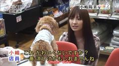 [ENG SUB] AKB600seconds - Kojima Haruna
