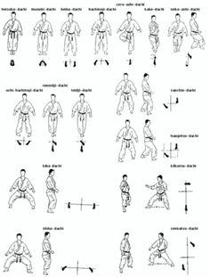 Basic karate stances
