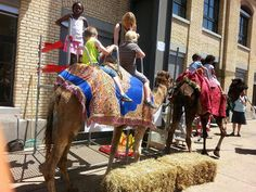 Switzerland African Music Festival Switzerland, African, Events, Places, Music, Animals, Musica, Musik, Animales