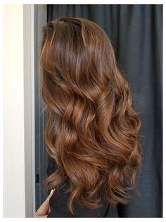 Honey Brown Hair Color, Honey Hair, Brown Hair Colors, Light Golden Brown Hair, Caramel Brown Hair, Hair Color Caramel, Golden Hair, Winter Hair Colors, Cinnamon Brown Hair Color